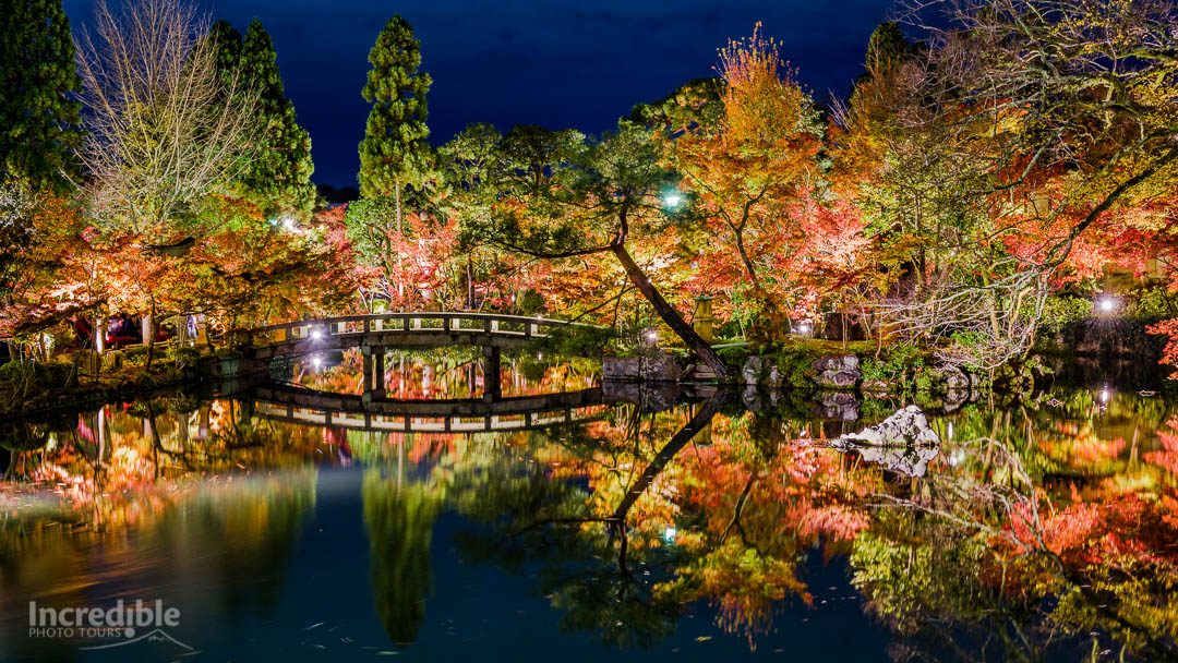 Autumn illumination at Eikando (永観堂)